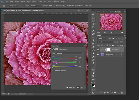How to Adjust Colors In Photos In Photoshop - Storyblocks Blog