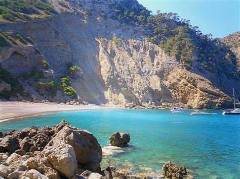 Playa Coll Baix (Alcudia) - 2018 All You Need to Know
